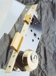Security escutcheon installed on lock with screws passing through DIN holes.